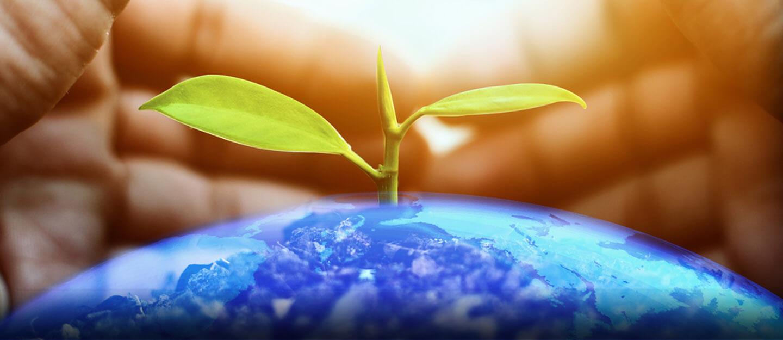 الديانات والبيئة